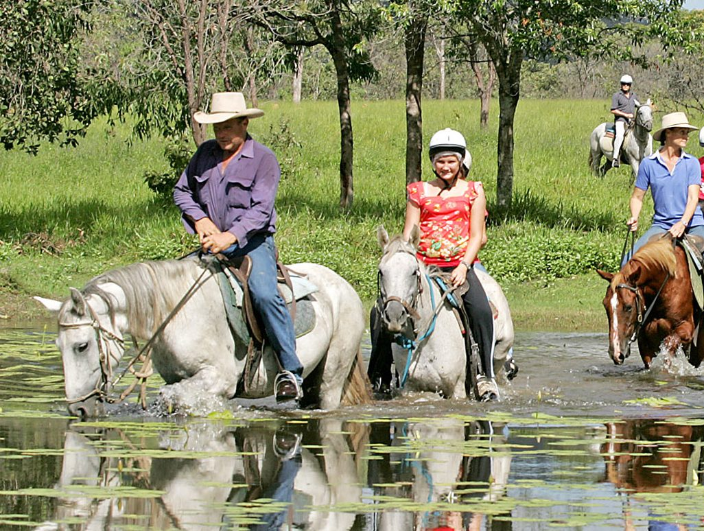 Horseriding tours